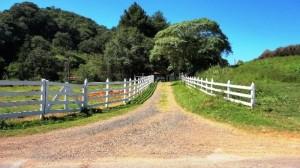 Artigo: Ganho de capital sobre alienação de imóvel rural