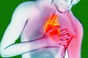 13 conselhos para ter um infarto primoroso