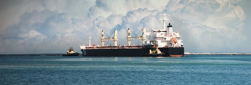 Porto de Paranaguá: auditores-fiscais notificam 18 empresas e emitem 72 autos de infração