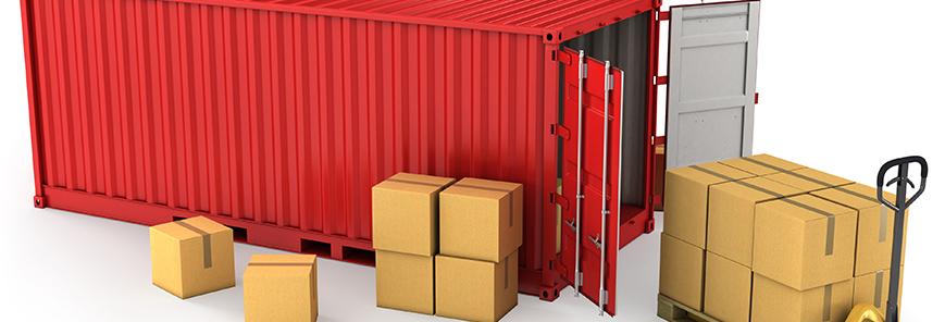 Declaração simplificada deve facilitar importações