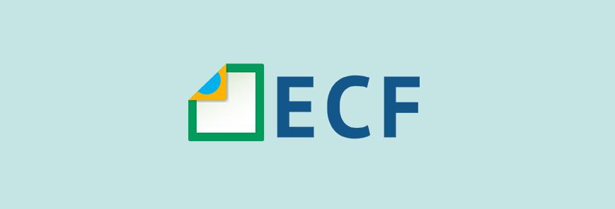 Conheça as novidades da ECD e ECF no curso do SESCAP-PR