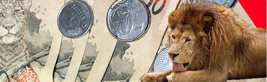 Malha fina da Receita Federal pega 235 empresas paranaenses